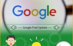Google's Fred Update